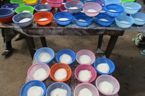 Article : Bénin : La sécurité alimentaire à Glazoué grâce au soja