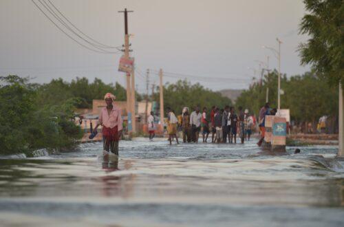 Article : Inondations au Sénégal : L'Etat face à une pluie de contestations