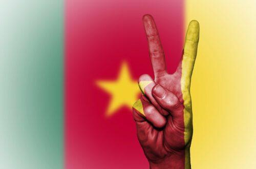 Article : [VIDÉO] Moustik Le Karismatik célèbre l'unité nationale