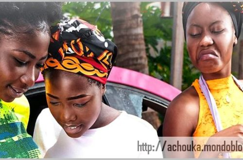 Article : Cameroun, la République du japap !