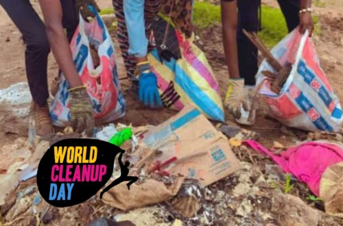 Article : World Cleanup Day, une occasion pour nettoyer le marché Calavi-Tokpa